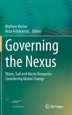 Governing the Nexus
