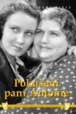 Pokušení paní Antonie - DVD box