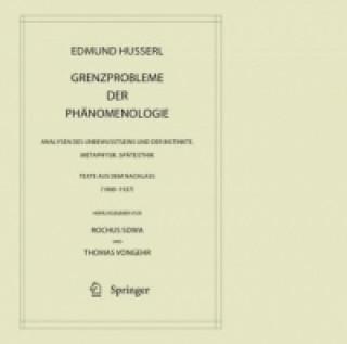 Grenzprobleme der Phanomenologie