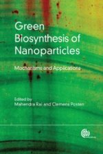 Green Biosynthesis of Nanoparticles