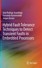 Hybrid Fault Tolerance in Embedded Processors, 1