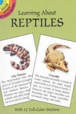 Learning about Reptiles