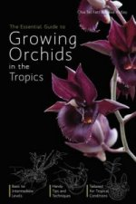 Essential Guide To Growing Orchids In The Tropics,