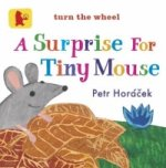 Surprise for Tiny Mouse