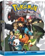Pokemon Black & White Box Set