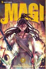 Magi: The Labyrinth of Magic, Vol. 1