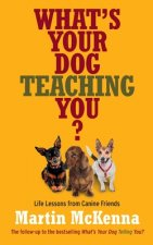 What´s Your Dog Teaching You?