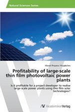Profitability of large-scale thin film photovoltaic power plants