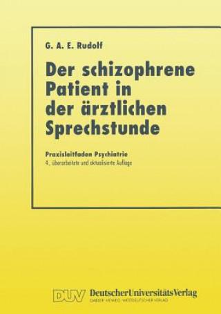 Der Schizophrene Patient in Der AErztlichen Sprechstunde