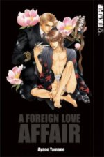 A Foreign Love Affair (Perfect Edition)