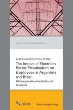 The Impact of Electricity Sector Privatisation on Employees in Argentina and Brazil