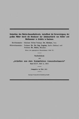 Gutachten Des Reichs-Gesundheitsrats, Betreffend Die Verunreinigung Der Gro en R der Durch Die Abw sser Der Zellulosefabrik Von K bler Und Niethammer