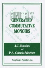 Finitely Generated Commutative Monoids