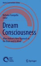 Dream Consciousness