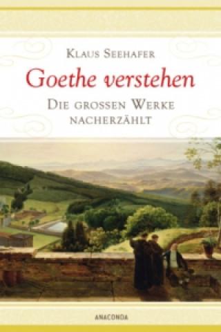 Goethe verstehen