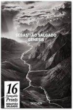 Sebastiao Salgado. GENESIS. Poster Set