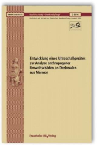 Entwicklung eines Ultraschallgerätes zur Analyse anthropogener Umweltschäden an Denkmalen aus Marmor. Abschlussbericht