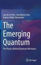 The Emerging Quantum, 1