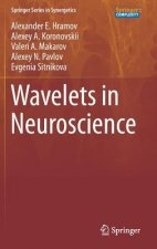 Wavelets in Neuroscience, 1