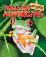 Classification: Animals: Amphibians