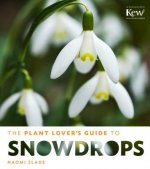 Plant Lover's Guide to Snowdrops