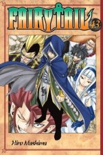 Fairy Tail 43