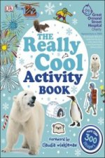 Really Cool Activity Book