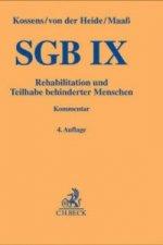 SGB IX, Rehabilitation und Teilhabe behinderter Menschen mit Behindertengleichstellungsgesetz, Kommentar