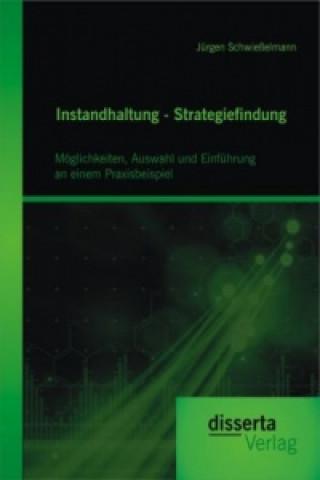 Instandhaltung - Strategiefindung: Möglichkeiten, Auswahl und Einführung an einem Praxisbeispiel