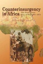 Counterinsurgency in Africa