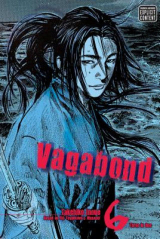 Vagabond (VIZBIG Edition), Vol. 6