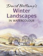 David Bellamy's Winter Landscapes