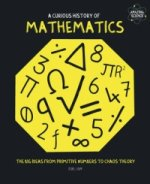 Curious History of Mathematics