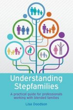 Understanding Stepfamilies: An Integrated Approach for Therapists and Relationship Professionals