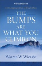 BUMPS ARE WHAT YOU CLIMB ON