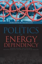Politics of Energy Dependency
