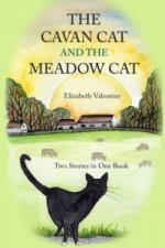 Cavan Cat and the Meadow Cat