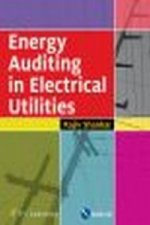 Energy Auditing in Electrical Utilities