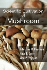 Scientific Cultivation of Mushroom