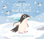 One Day in Antarctica