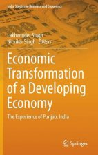 Economic Transformation of a Developing Economy