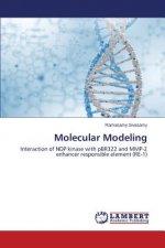 Molecular Modeling