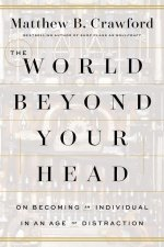 World Beyond Your Head