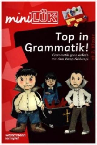 Top in Grammatik! Grammatik ganz einfach mit dem Vampi-Schlampi