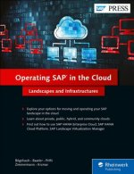 Operating SAP in the Cloud