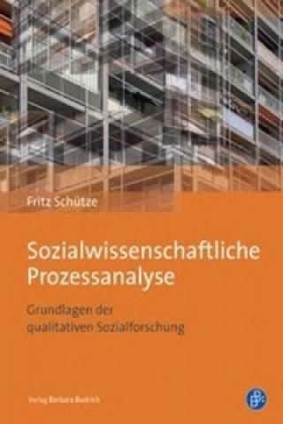 Sozialwissenschaftliche Prozessanalyse