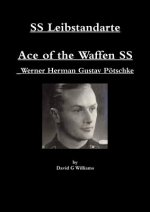 Ss Leibstandarte, Ace of the Waffen Ss, Werner Herman Gustav