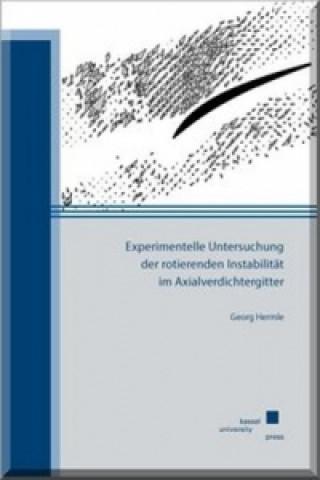 Experimentelle Untersuchung der rotierenden Instabilität im Axialverdichtergitter
