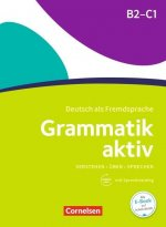 Grammatik aktiv B2-C1, m. Audio-CD