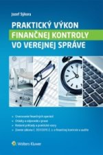 Praktický výkon finančnej kontroly vo verejnej správe